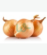 Fruit & Veg: Basal (onions)