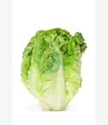 Fruit & Veg: Hass Twil (long Lettuce)