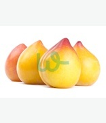 Fruit & Veg: Plums (ghanbaqar)