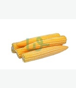 Fruit & Veg: Baby Corn