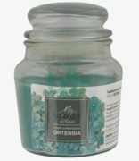 AD Trend My Garden Ortensia Scented Candle Jar