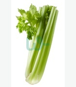 Fruit & Veg: Celery Stick (karfus)