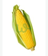Fruit & Veg: Corn On The Cob